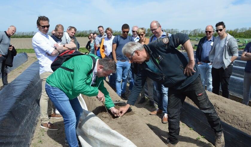 Bert Keijser laat koks zien waar de Texelse asperges vandaan komen.