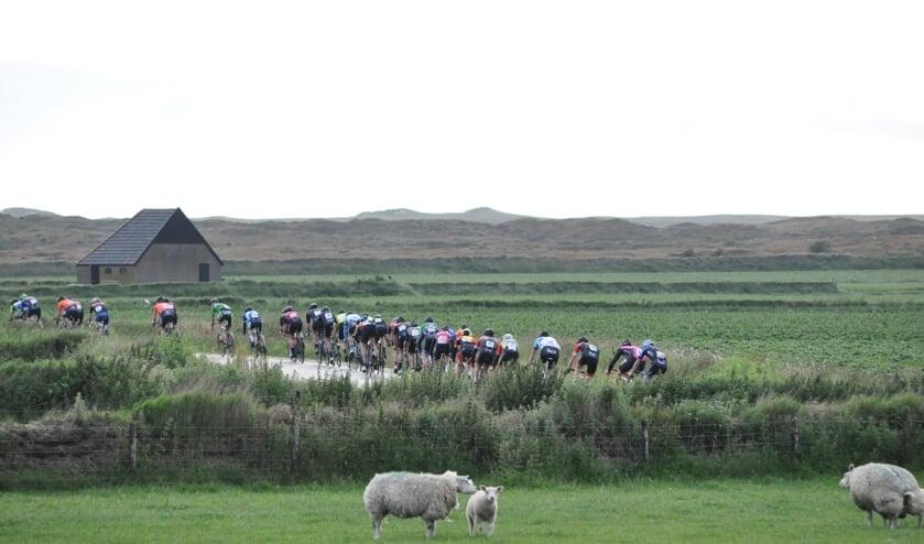 Het peloton over het Lagewegje bij Den Hoorn.