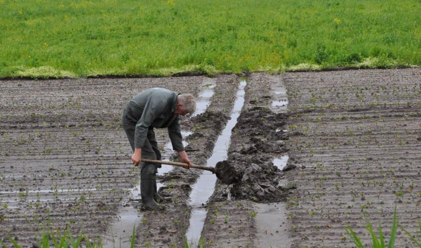 Akkerbouwer Jan Lap spit een greppel om het overtollige water af te voeren.