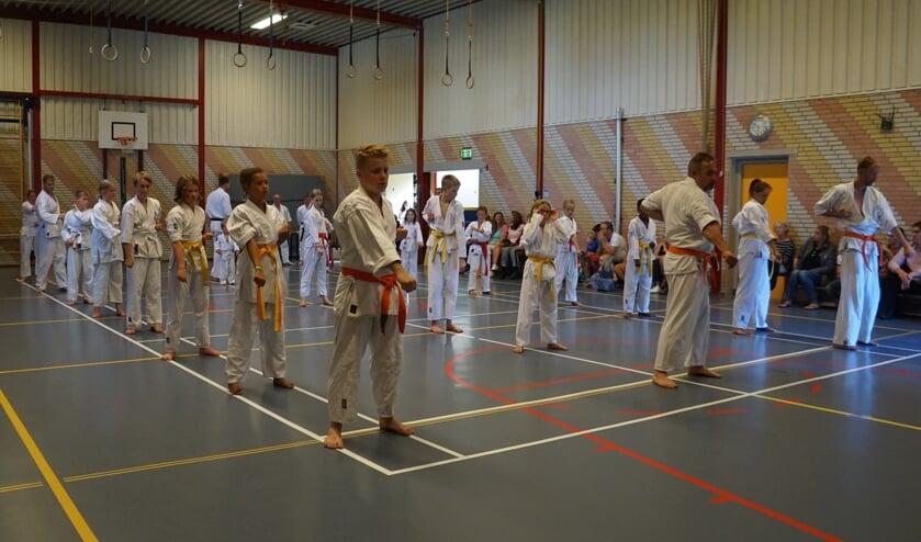Leden van Shima leggen het karate-examen af.