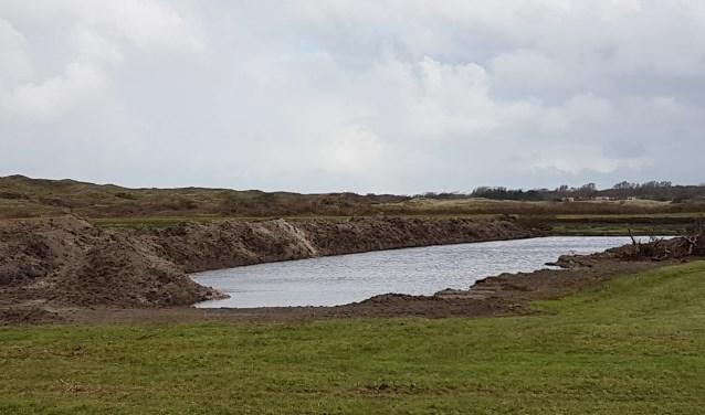 Natuurontwikkeling in het gebied van de Hanenplas.