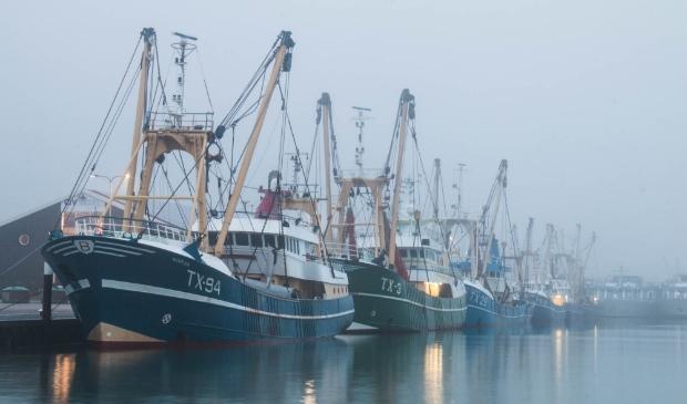 <p>Kotters in de haven van Oudeschild, vorig weekend.</p>
