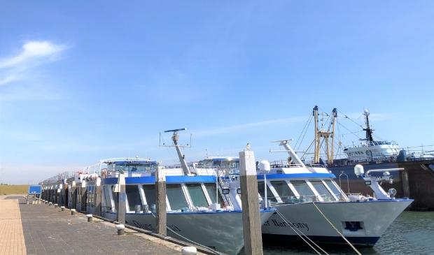 De twee cruiseschepen van 125 en 110 meter lengte aan de kade in Oudeschild.