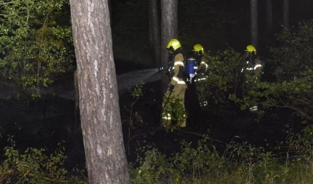 De brandweer bestrijdt het vuur in het bos.