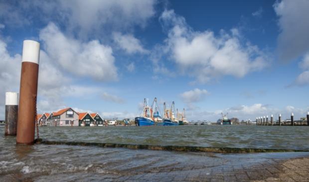 <p>De haven van Oudeschild.</p>