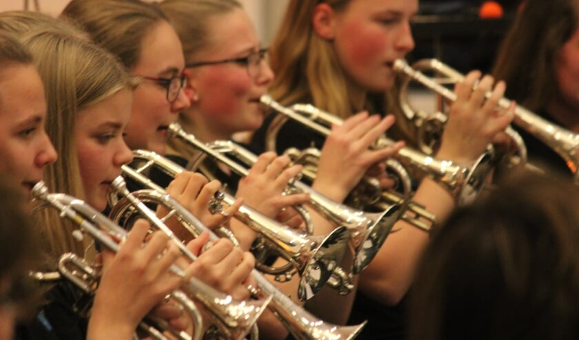De Wâldsang verzorgt in heel Noordoost-Friesland muzieklessen.