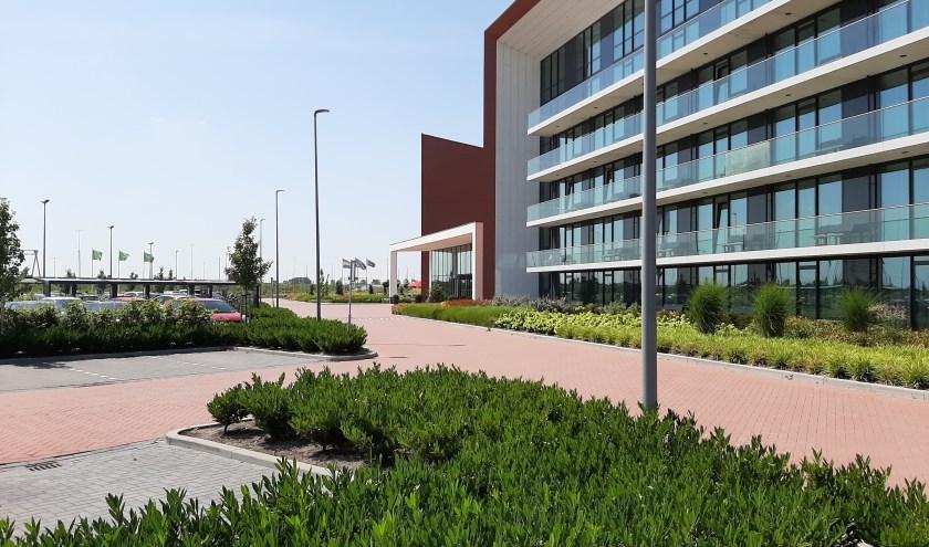 Ook bedrijfstuinen worden ontworpen en aangelegd door Tuinstyling Hamersma.