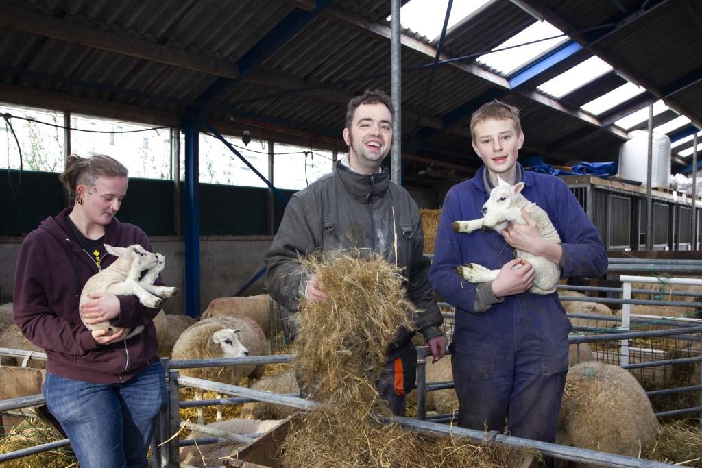 Hiske, Michael en Martijn genieten van de lammetjes die zijn geboren op de zorgboerderij. Foto: Actief Media © Actief Media