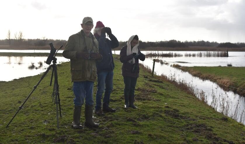 Drie tellers midden in de polder. V.l.n.r.: Fokko Winterwerp, Freek Nijland en Teike van Minnen.