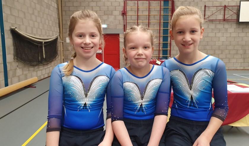 V.l.n.r. Annieke de Vries, Fenna van der Wal en Lianne van der Werff.