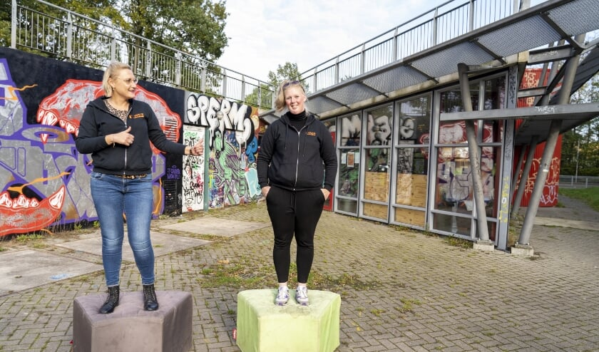 <p>De twee jongerenwerkers van Place2B in Drachten, Margriet Balk (links) en Domenica van de Geer (rechts). Domenica wil de hulpverlening aan jongeren verbeteren en zamelt zaterdag donaties in voor MIND door mee te doen met de actie &#39;Last Man Standing&#39;.</p>