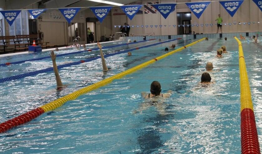De Welle is het decor van de Zwem4daagse.