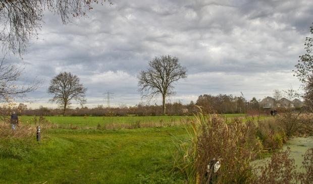 De weilanden tussen de Sintrale As en Wettermunt (achtergrond) in Burgum.