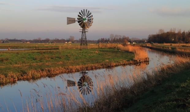 <p>Een Amerikaanse windmolen in De Alde Feanen. Ontwatering is al eeuwenlang een thema.</p>