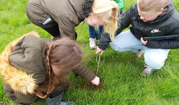 Leerlingen van 't Holdersnest in Harkema voeren een onderzoek uit.
