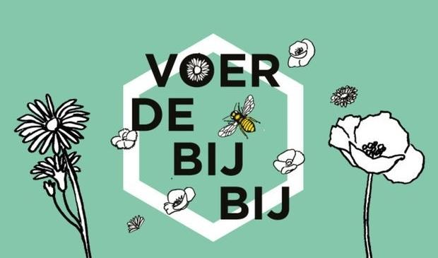 Zonder bijen andere insecten dreigt hongersnood.