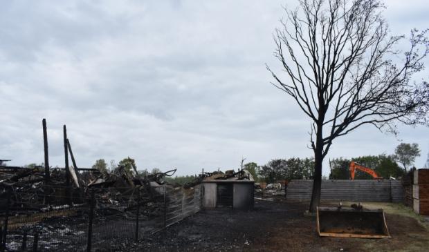 Van de grote loods is niets meer over. Of deze boom de brand overleeft is ook nog de vraag. Maar er raakte niemand gewond.
