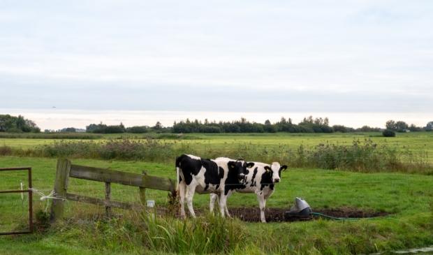 De Hegewarren, een agrarische polder zuidwestelijk van Nationaal Park De Alde Feanen.