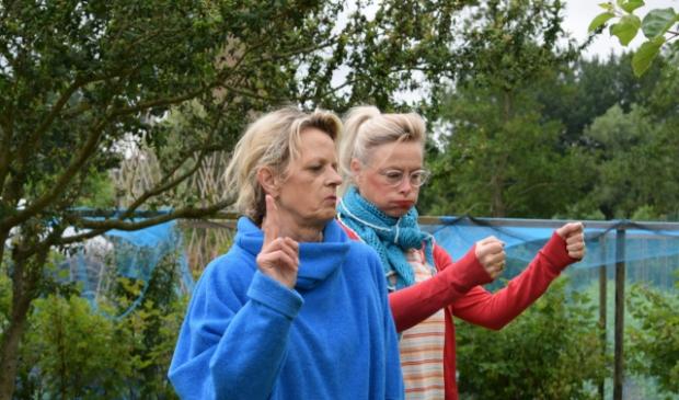 <p>Yn it blau) Anja Steegstra yn de rol fan &uacute;tfeartlieder Tine Schaap - gjin Tine Skiep, sa wol se perfoarst net oansprutsen wurde - rjochts Jelly Krol as har assistinte Akkemyn.<br><br></p>