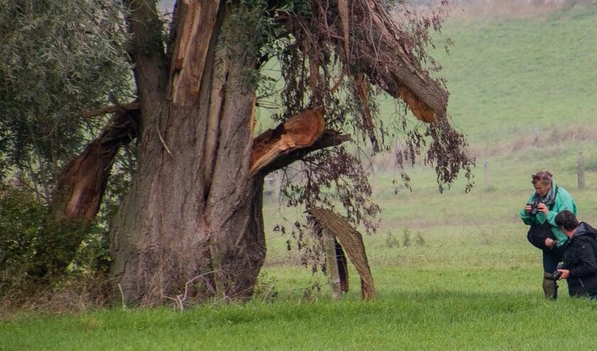 Samen op pad in het veld. (foto: Wil Teunissen)