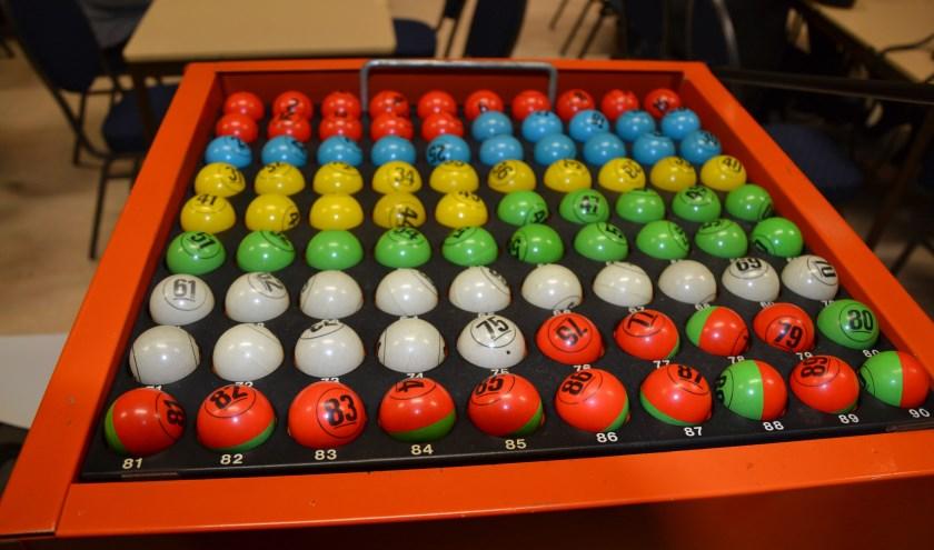 Bingo! (foto: Harry Willemsen)