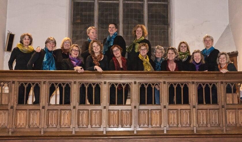 Het koor De Cantantes. (foto: Erik Hendriks)
