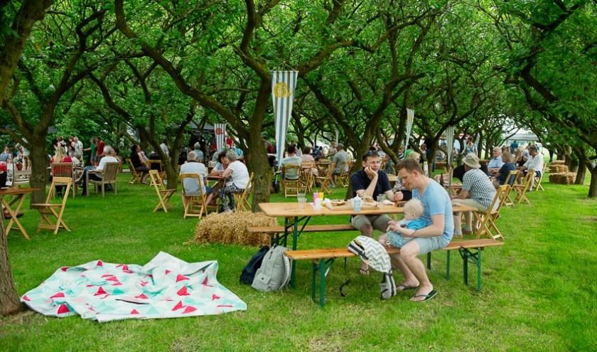 Eten, drinken en muziek in Park Bredelaar. (foto: Walter Sietinga)
