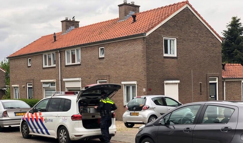 (foto: Harm van den Brink)