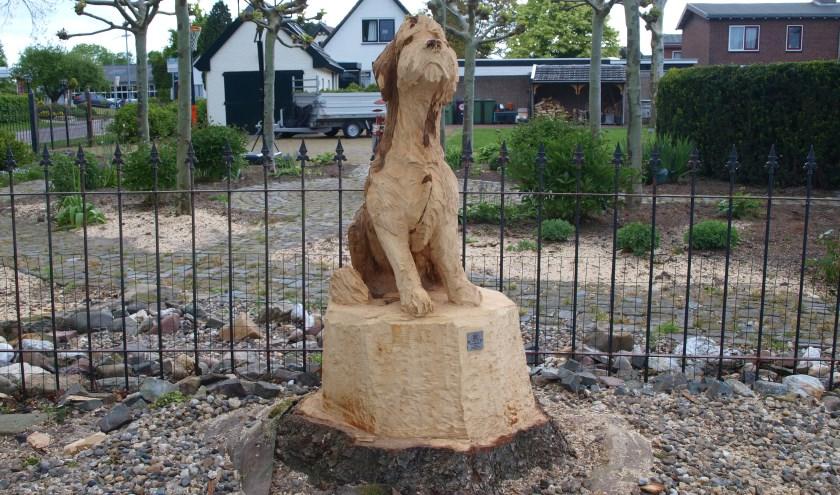 Eerst boom daarna hond. (foto: Frans Willemsen)