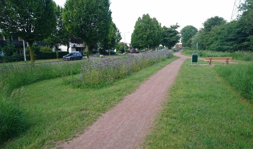 Wardstraat in Bemmel. (foto: Ewald Nijenhuis SLN)