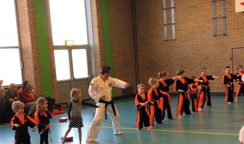 Taekwondo Tigers. (foto: Emil Ripassa)