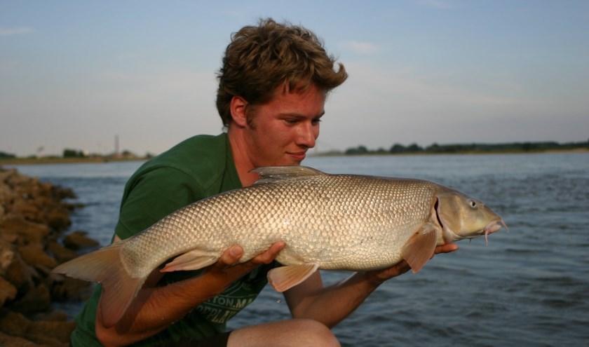 Op de rivier zijn prachtige vissen te vangen.  (foto: Hengelsport federatie midden Nederland )