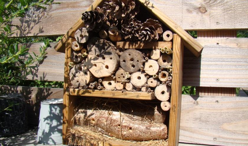 Insectenhotel. (foto: Jannet Tigchelaar)