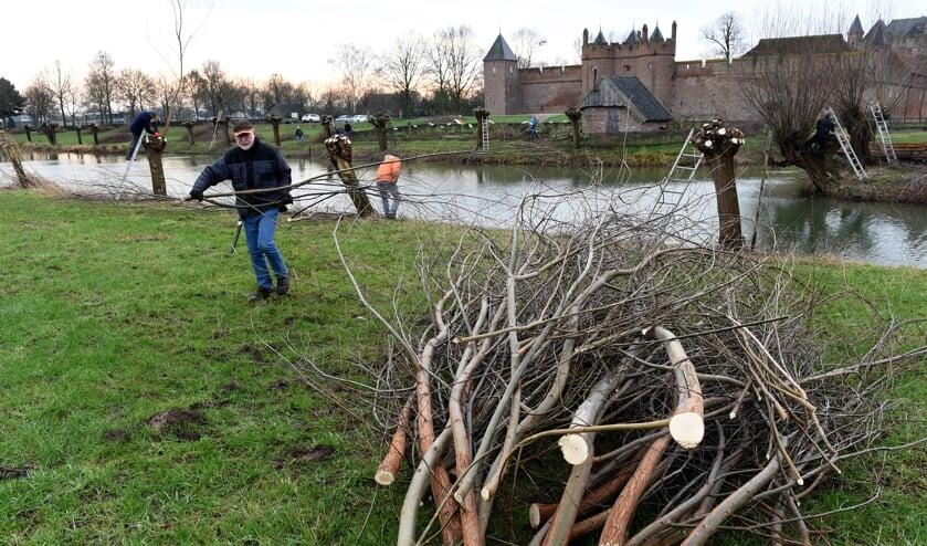 Wilgenknotten rond Kasteel Doornenburg door enthousiaste vrijwilligers. (foto: Sjaak Veldkamp)