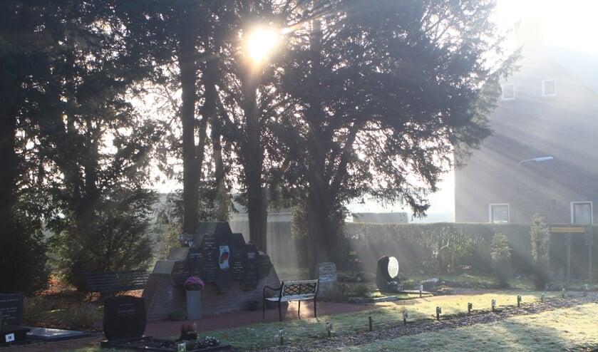 Zon schittert door bomen bij het kerkje van Angeren. (foto: Marcel Smit)