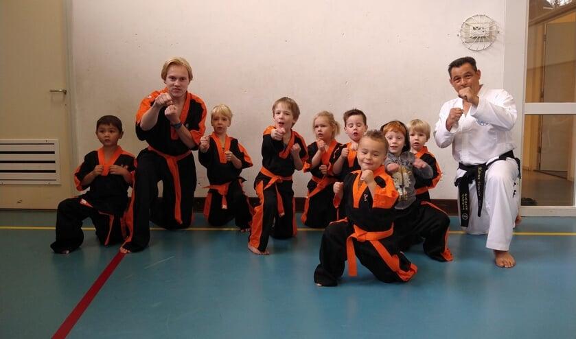 Taekwondo Tigers