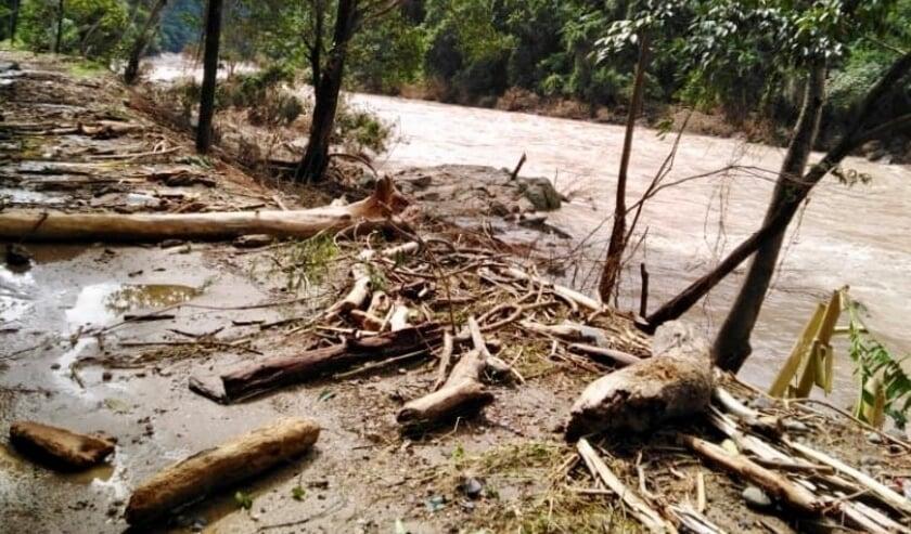 <p>&ldquo;De orkaan Eta is dwars door het gebied El Pital getrokken.&quot; </p>