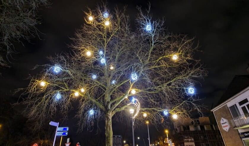 <p>Sfeerverlichting in grote boom entree centrum. (foto: Paul te Wierike)</p>