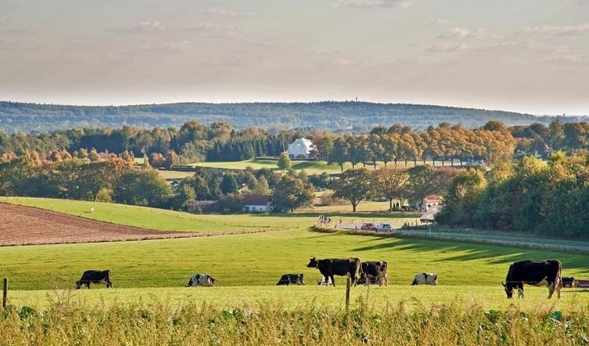Uitzicht vanaf de Zevenheuvelenweg op het Duitse Reichswald.