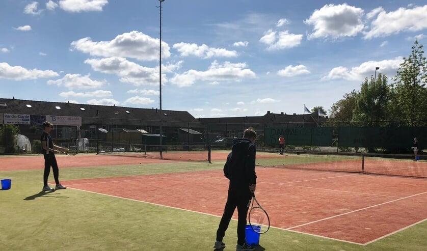 Weer lekker tennissen. (foto:  Kersenplukkers)
