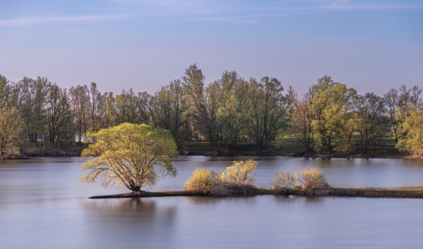 Gendtse polder. (foto: Jack van Dalen)