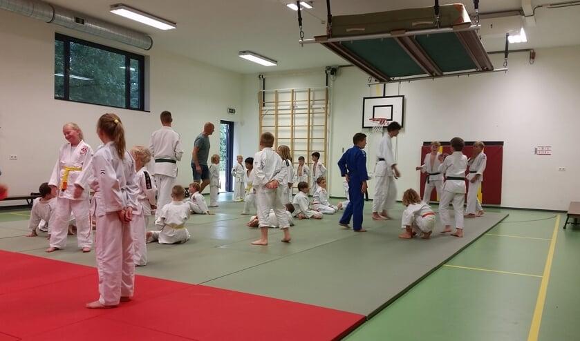 Spelletjestraining judo op 10 juli. (foto: Judovereniging Groesbeek)