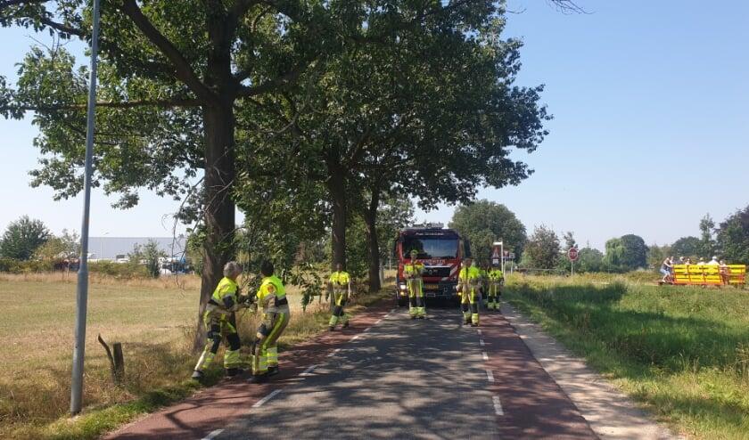 Brandweerlieden trekken tak los. (foto: Waldie Rutten)