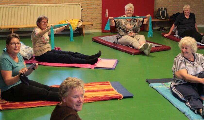 Training met vitale ouderen in Driel. (foto: Gertruud Kooiman)