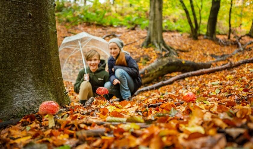 <p>Kinderen met paraplu. (foto: Geldersch Landschap & Kasteelen)</p>