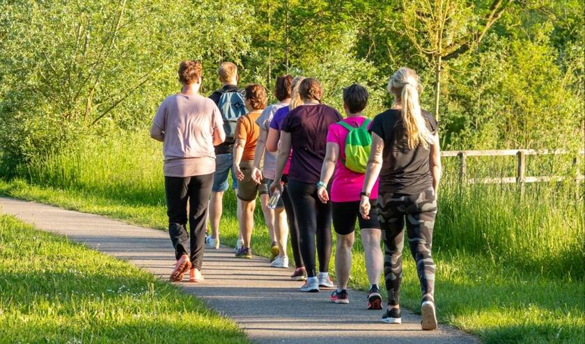 <p>Sportief Wandelen. (foto: Henny van Diest /Lingewaard in beweging)</p>