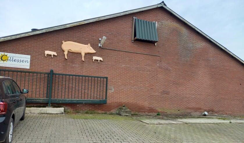 <p>(foto: Joop Verstraaten)</p>