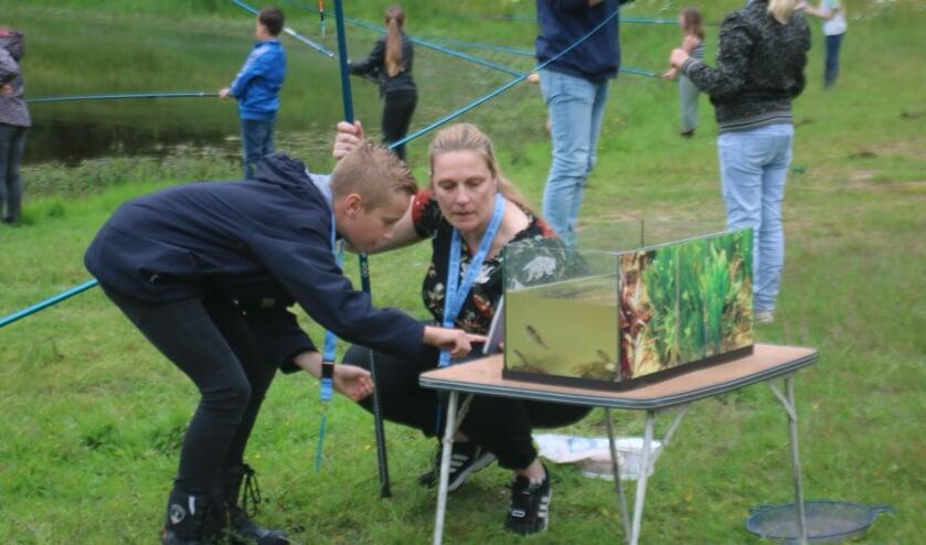 <p>Groep 7 Martinusschool houdt zich bezig met vissen. (foto: HSV De Zeelt)</p>