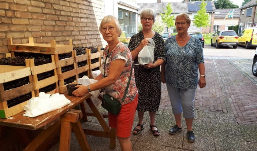 <p>De meer dan 150 bakjes met kersen staan klaar voor verzending. (foto: De Zonnebloem Elst)</p>