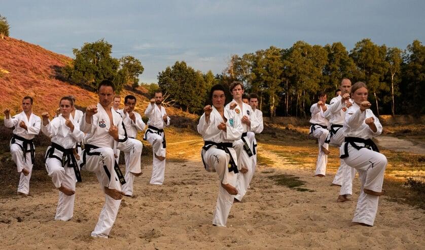 <p>Taekwondo-training. (foto: Emil Ripassa)</p>